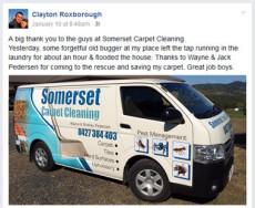 Carpet Cleaning testimonial